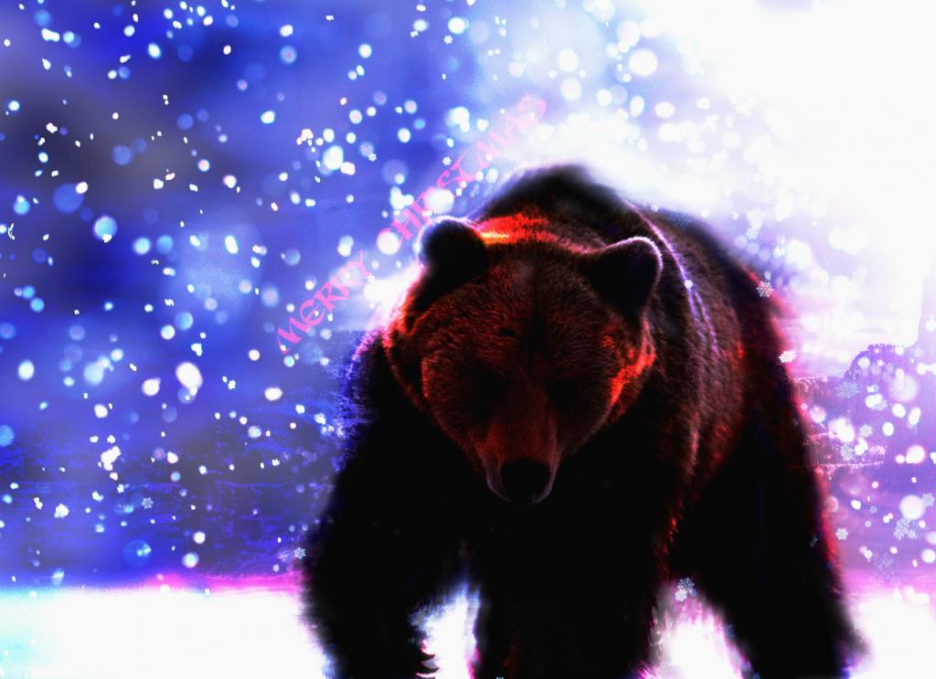 Random Graphical Work Bear_zpsd4c5cdde