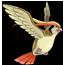Equipo Pokemón Pidgeot1_zpsa1f031cd
