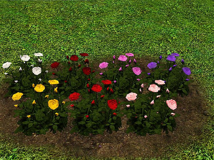 Roses Set Screenshot-27