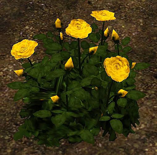 Roses Set Screenshot-30