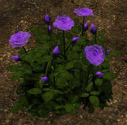 Roses Set Screenshot-32