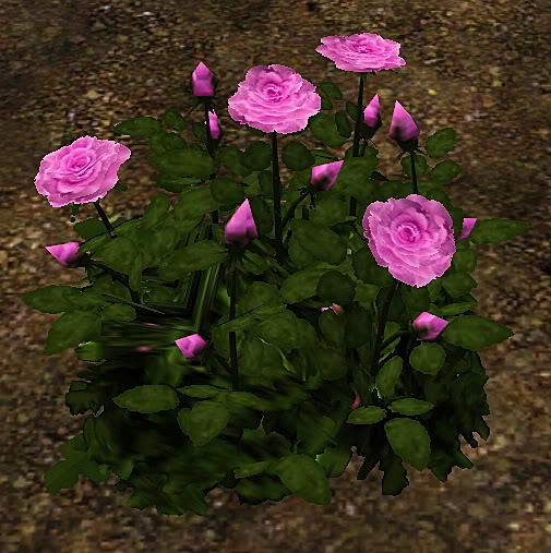 Roses Set Screenshot-33