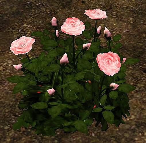Roses Set Screenshot-34