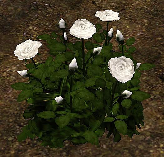 Roses Set Screenshot-35
