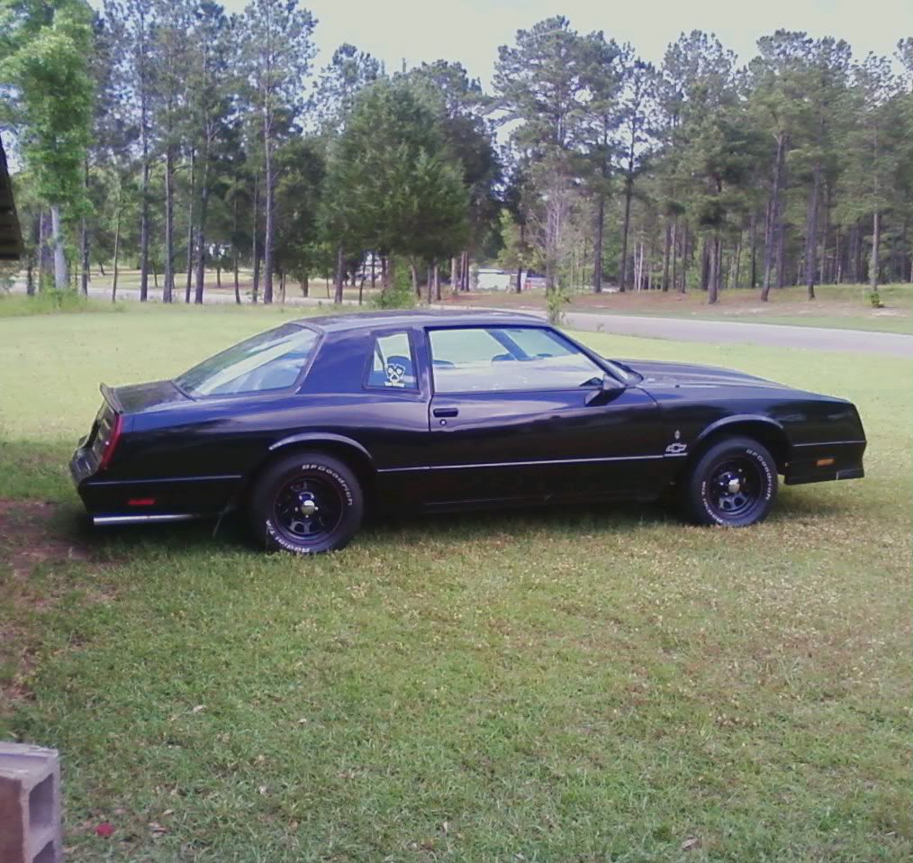 My Monte Carlo SS build 0430091734_0001