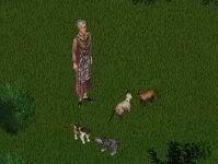 Clayworld's Sims 199px-Scrapbook1