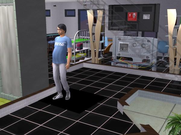 Sims 2 FAQ - Page 2 Snapshot_ed7b3373_40e43fd8_zpsc8260f23