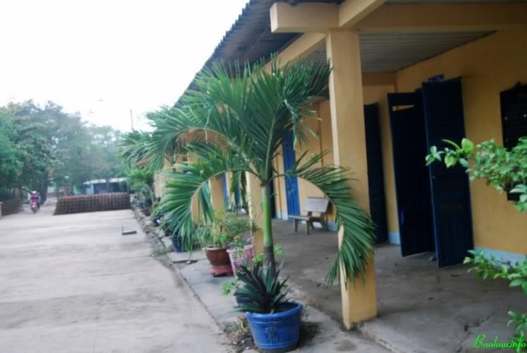 Trường xưa... mới DSC_01431600x12001600x1200