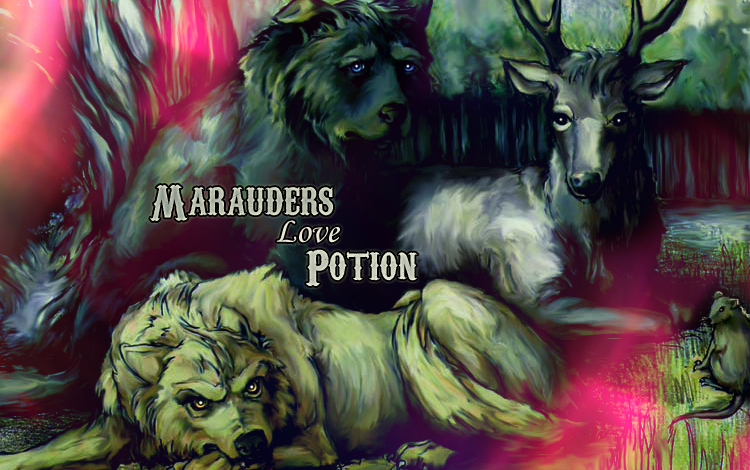 Marauders Love Potion