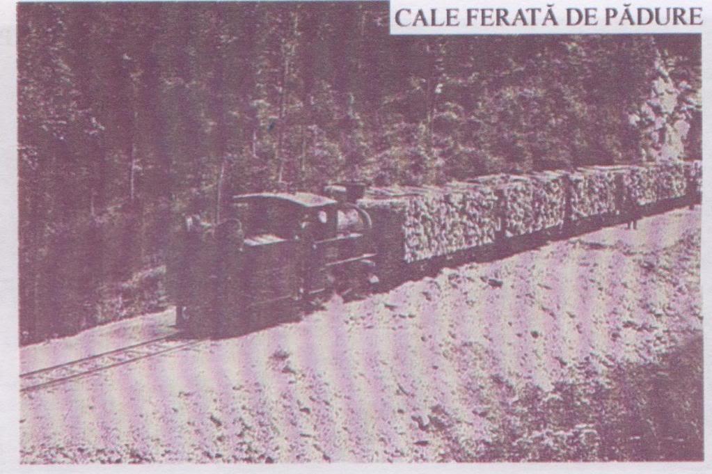 Linii industriale - Pagina 4 CFF2