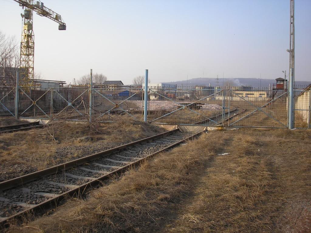 Linii industriale - Pagina 6 P3121682