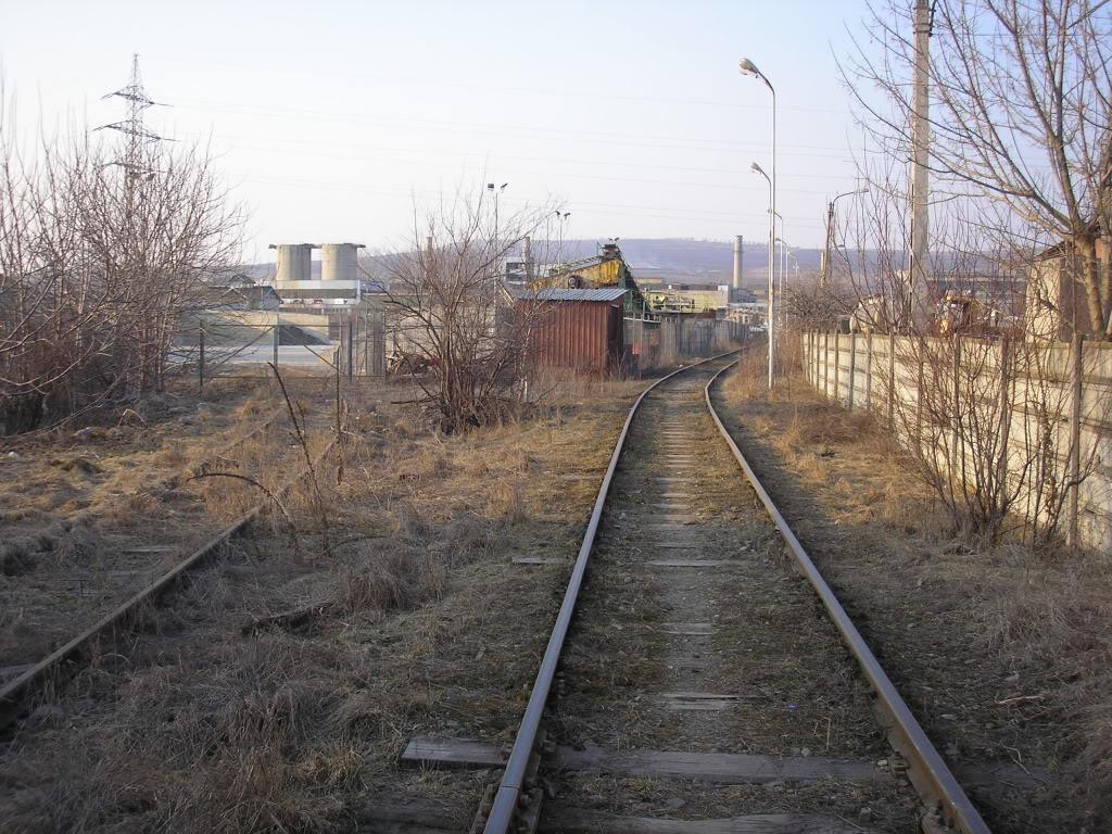 Linii industriale - Pagina 6 P3121694