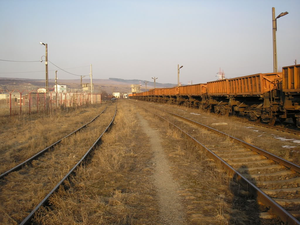 Linii industriale - Pagina 6 P3121714