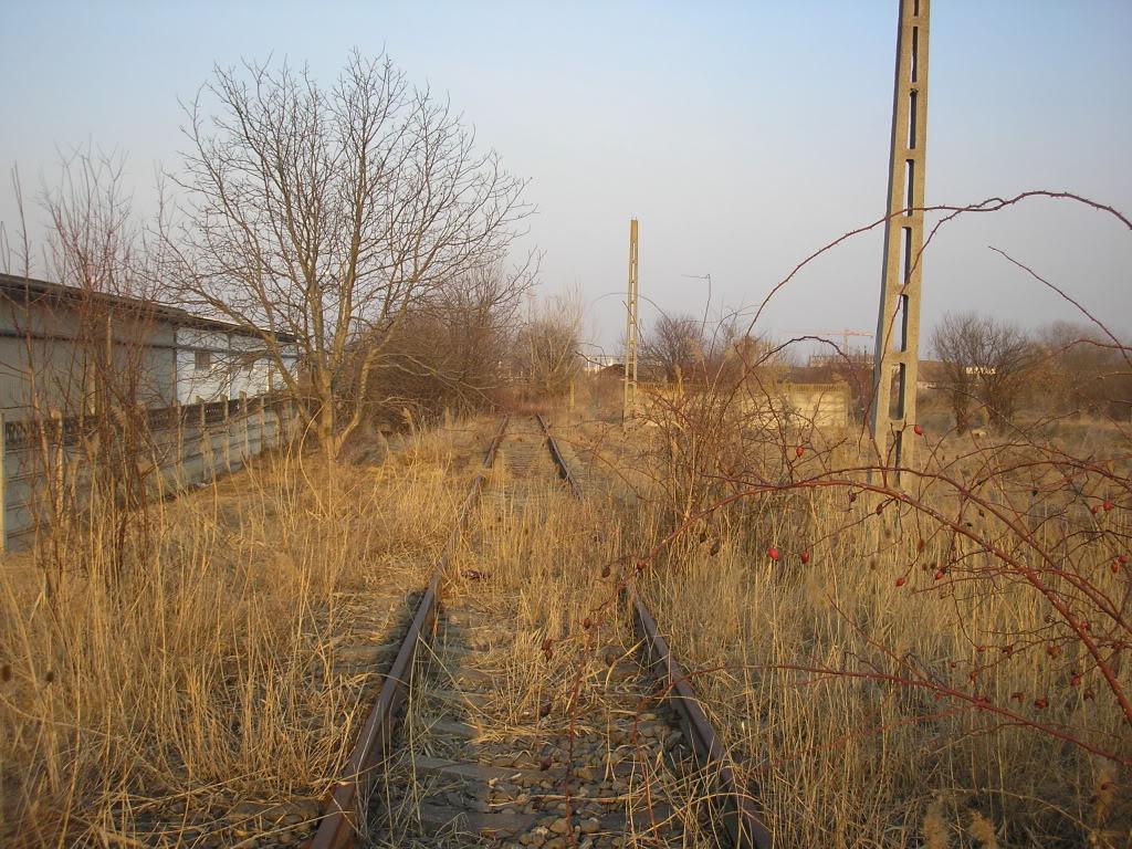 Linii industriale - Pagina 6 P3121732