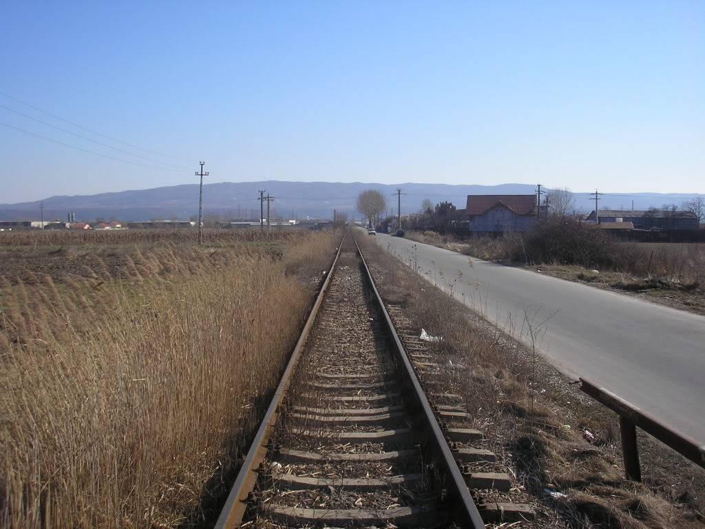 Linii industriale - Pagina 3 P2101525