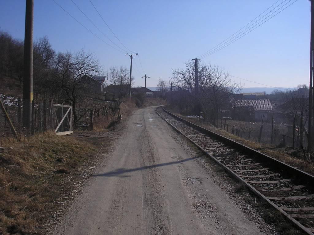 Linii industriale - Pagina 3 P2101545