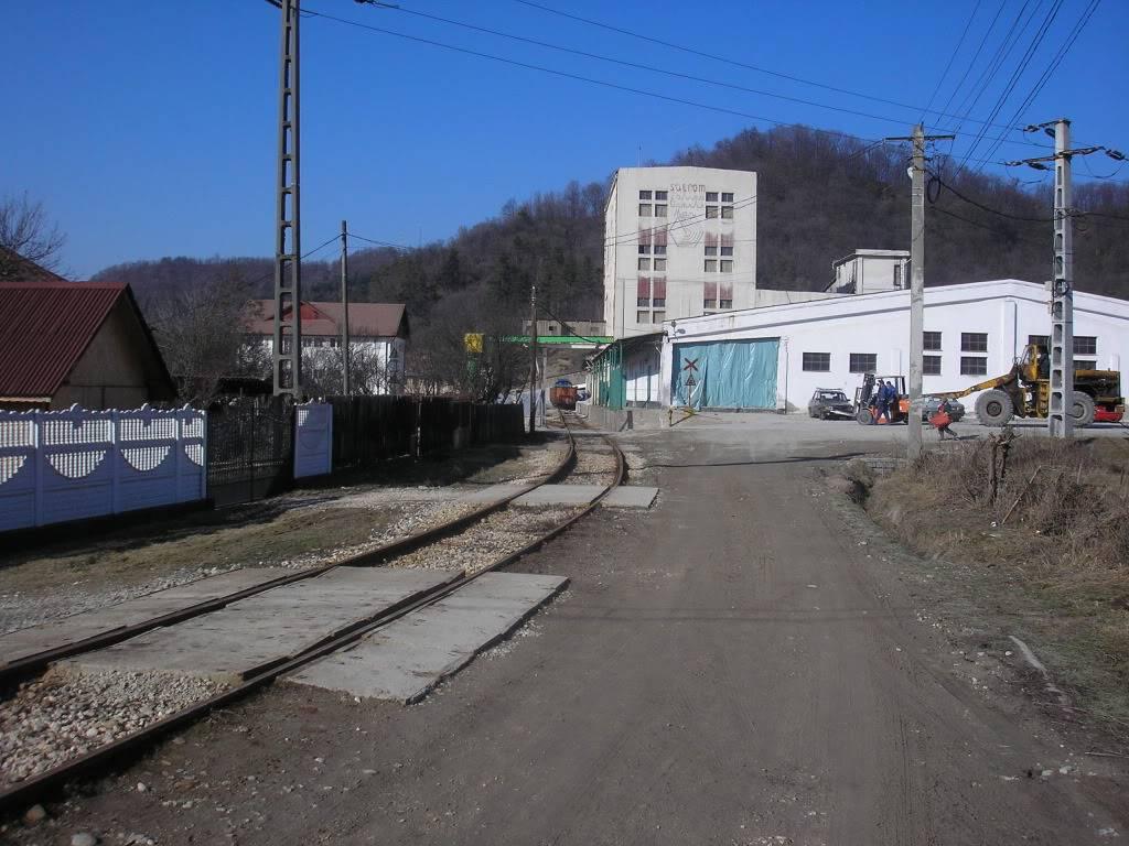 Linii industriale - Pagina 3 P2101555