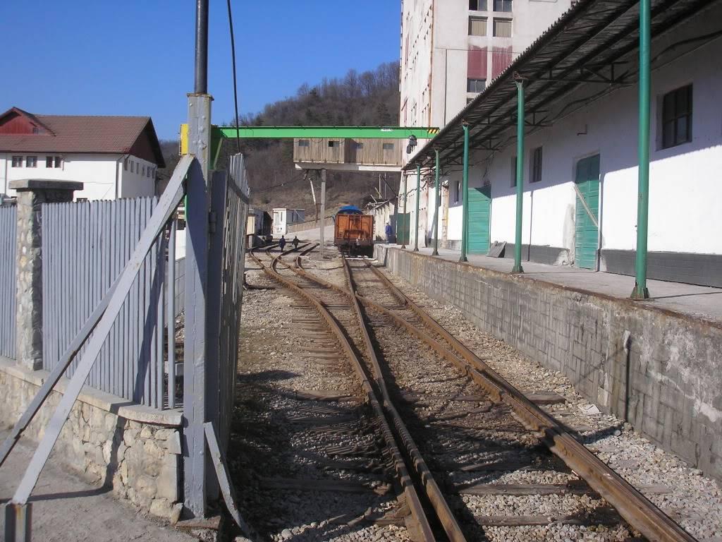 Linii industriale - Pagina 3 P2101559