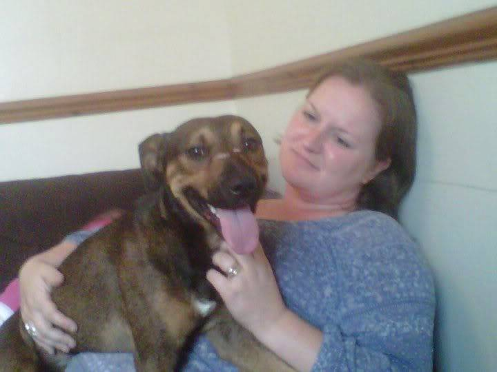 Cain, unknown mixture of a yr fostered by Four Paws Animal Rescue (South Wales)  Cain1