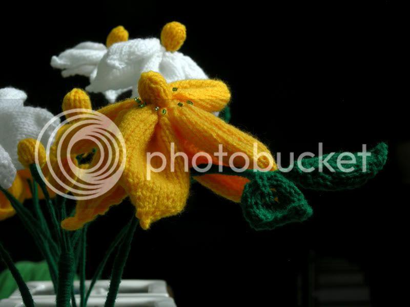 அழகிய மலர் காட்சிகள் (01) - Page 9 Knitted-flowers-2