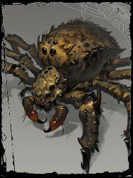 ÉPICO CAOS - Ejército de Arachnise Arantulla