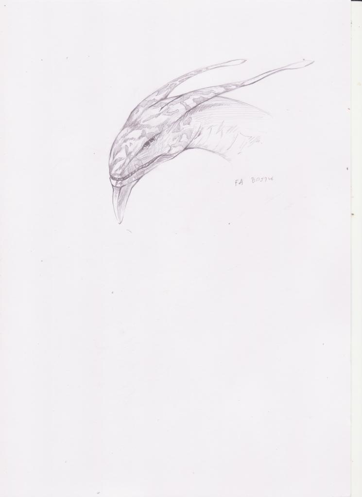 งูเงี้ยว - Page 10 03001