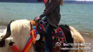 [News] alan's Tibet Trip Alan20