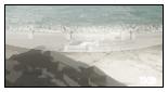 Campo Desertico