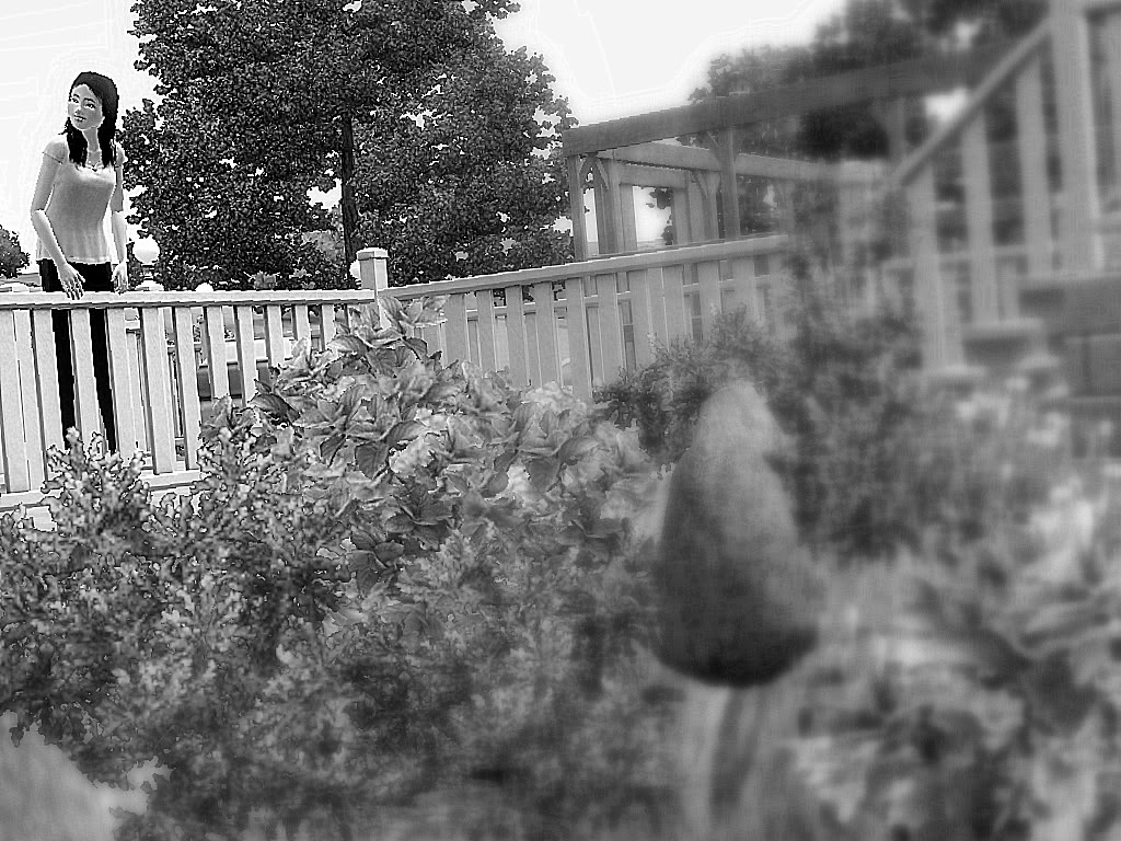 Some pictures I've just taken :3 - I don't know if it goes in this category, sorry XD Landscaping02