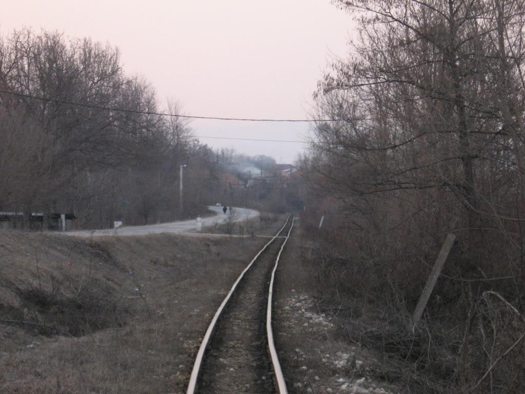 Govora - Bistrita (linie ingusta) - Pagina 2 IMG_2719