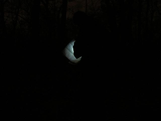 "FENIX LD05 ""MONT BLANC"" među penlight svjetiljkama IMG_1185Small"