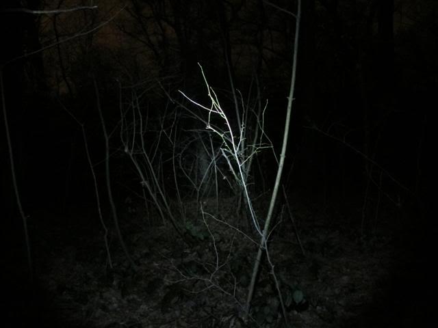 "FENIX LD05 ""MONT BLANC"" među penlight svjetiljkama IMG_1190Small"