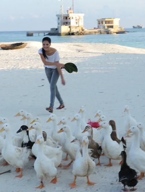 Hoa hậu Hương Giang đi chăn vịt ở Trường Sa 226704_221894447840301_100000592429154_901780_6219898_n