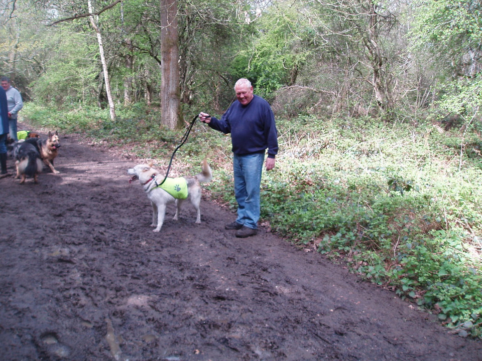 Luddy now with John homed Newlands024