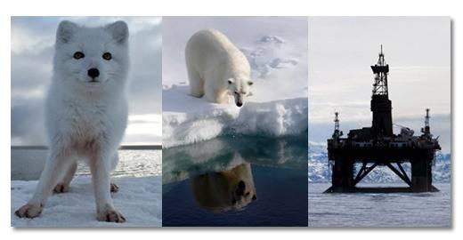 Μόλυνση του Περιβάλλοντος και Οικολογικά Νέα - Σελίδα 4 ImageProxy2