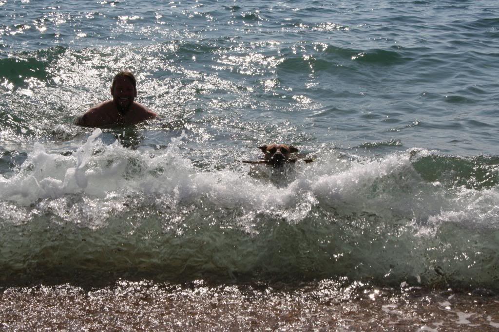 Adventures of sea biscuit (Pic heavy) IMG_2690_zpsbb1b1384