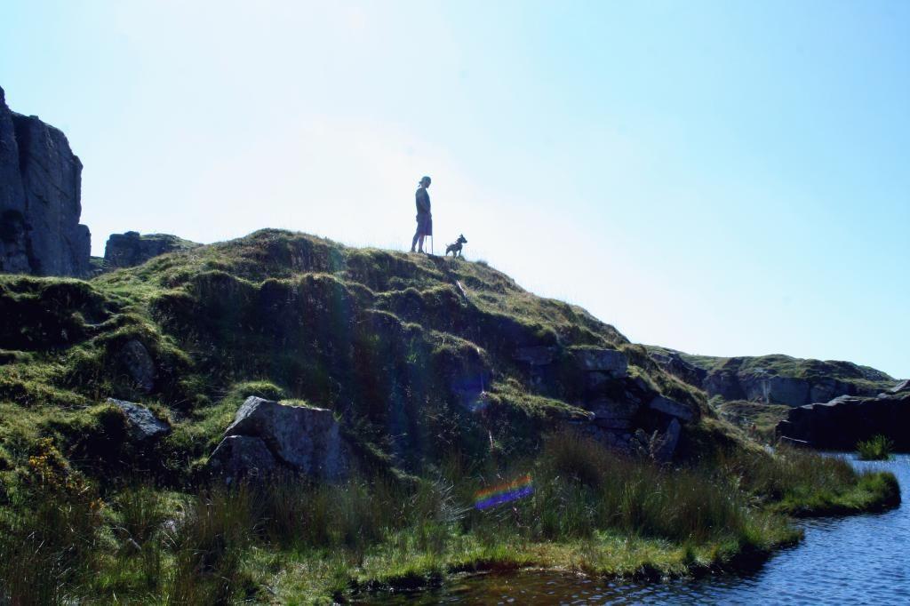Bug & Fred's moors adventure!  IMG_2980_zpsa10546d3