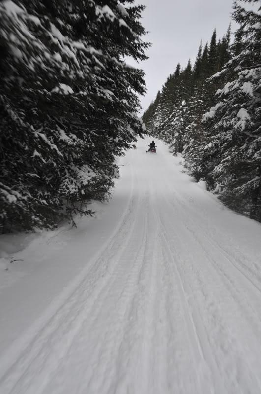 Toute une aventure en Acadie !!!!!! DSC_6690