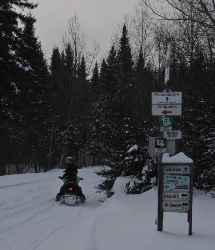 Toute une aventure en Acadie !!!!!! DSC_6707