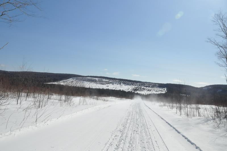 Toute une aventure en Acadie !!!!!! DSC_6809