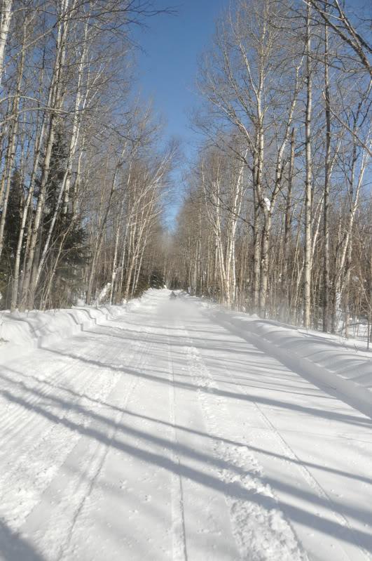 Toute une aventure en Acadie !!!!!! DSC_6854