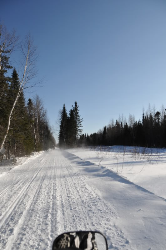 Toute une aventure en Acadie !!!!!! DSC_6891