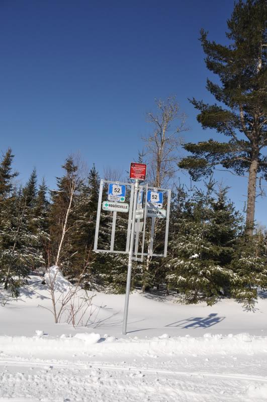 Toute une aventure en Acadie !!!!!! DSC_6984