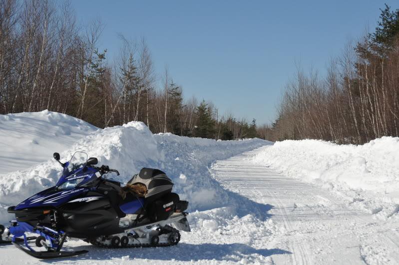 Toute une aventure en Acadie !!!!!! DSC_7005