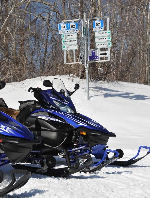 Toute une aventure en Acadie !!!!!! DSC_7069