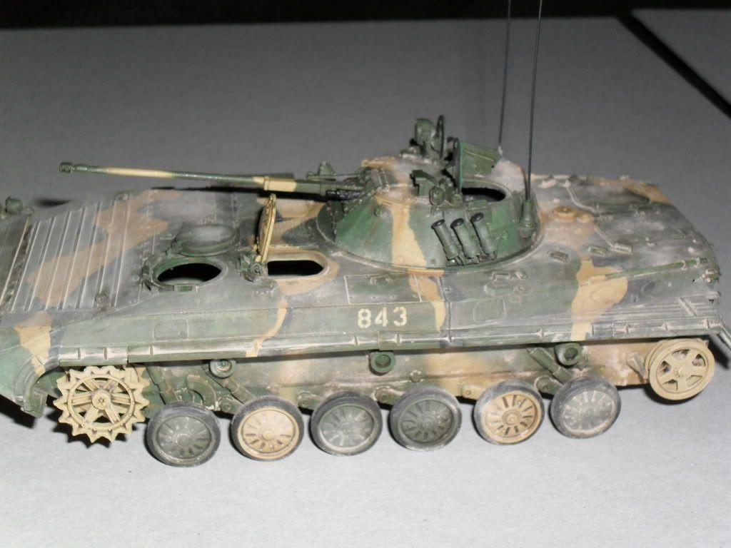 BMP-2 Géorgie SDC10111