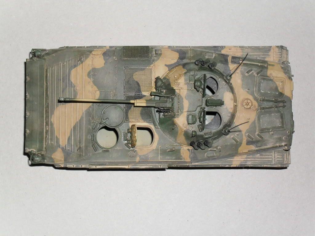 BMP-2 Géorgie SDC10137