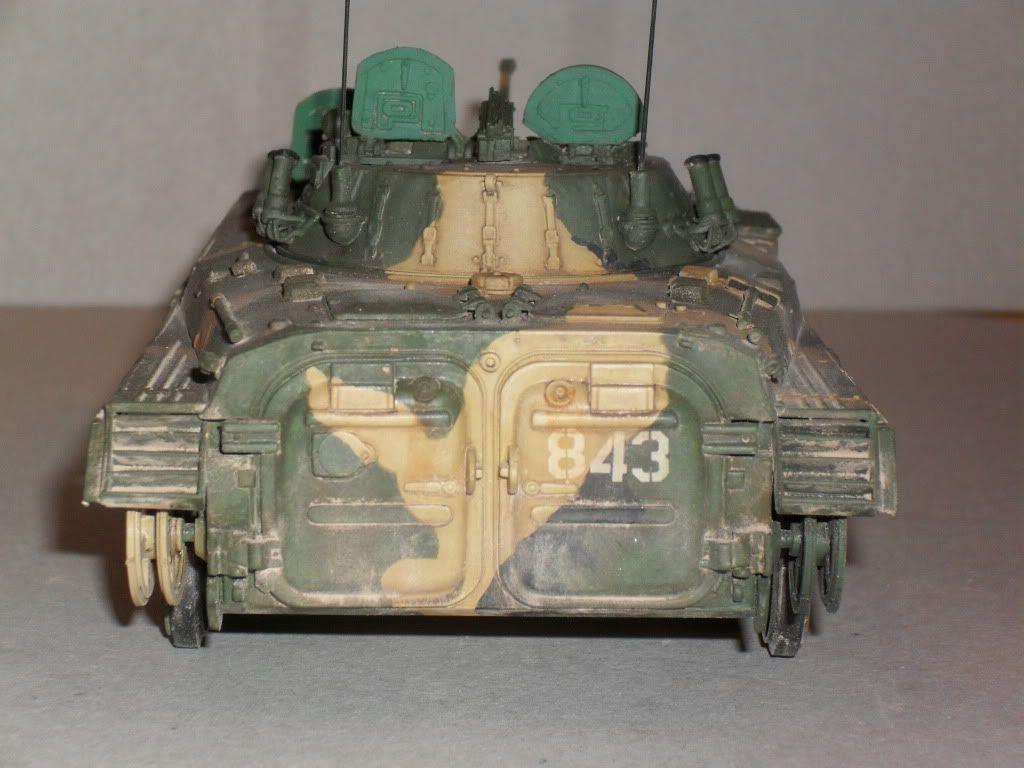 BMP-2 Géorgie SDC10188