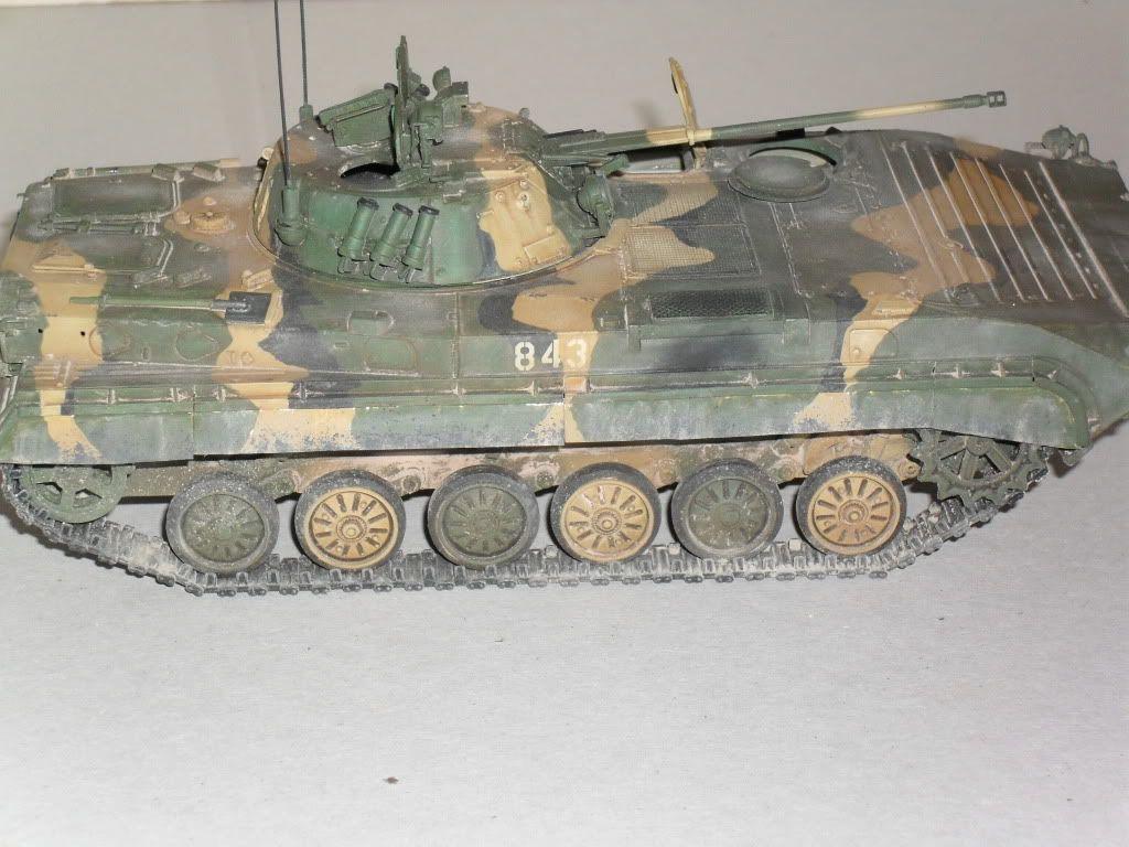 BMP-2 Géorgie SDC10264