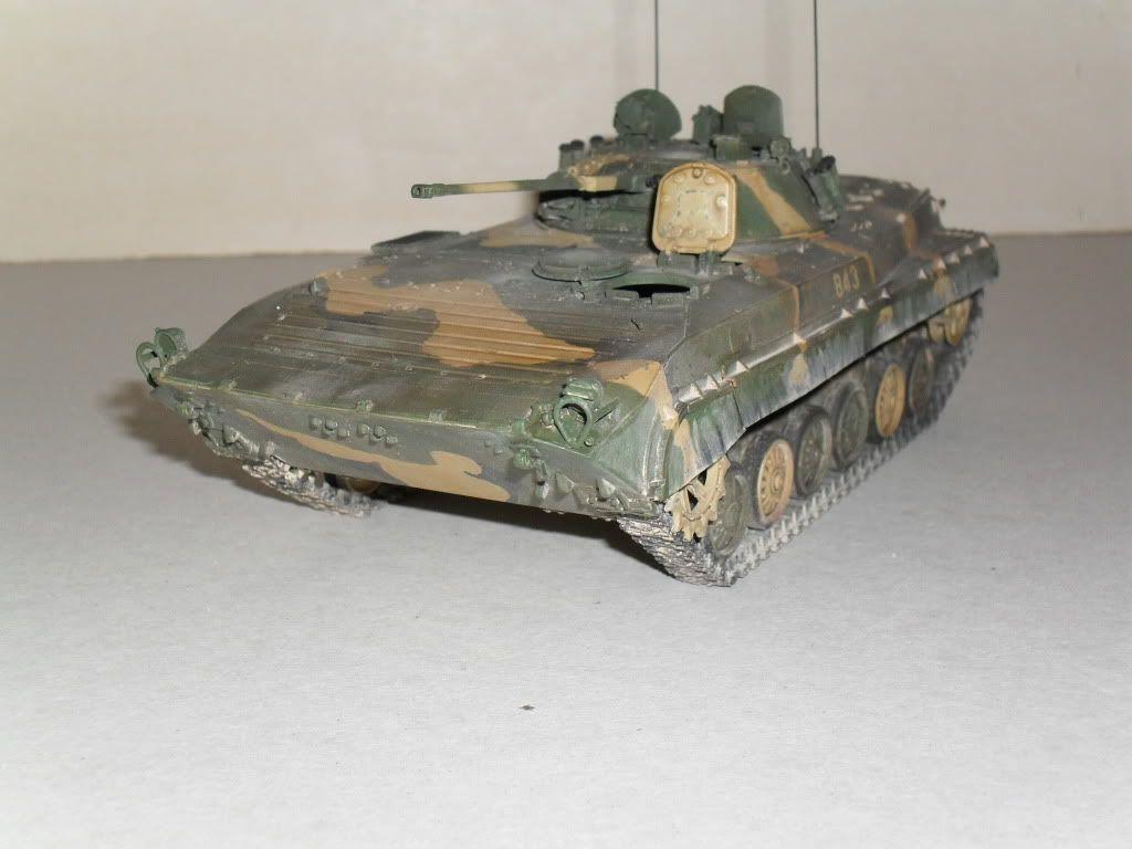 BMP-2 Géorgie SDC10278